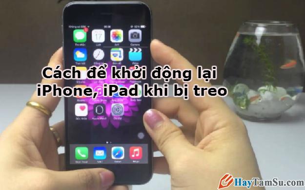 Hình 1 - Cách để khởi động lại iPhone, iPad khi bị treo