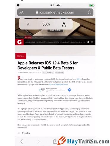 Tăng - Giảm size văn bản cho web Safari trên iOS 13 + Hình 10