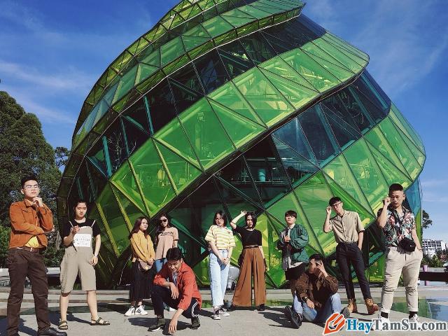 Chia sẻ kinh nghiệm du lịch Đà Lạt tự túc giá rẻ 2020 + Hình 2
