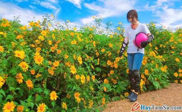 Chia sẻ kinh nghiệm du lịch Đà Lạt tự túc giá rẻ 2020 + Hình 10