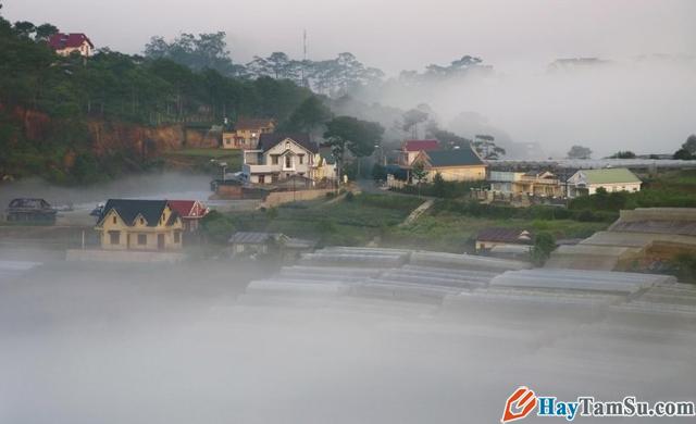 Chia sẻ kinh nghiệm du lịch Đà Lạt tự túc giá rẻ 2020 + Hình 12
