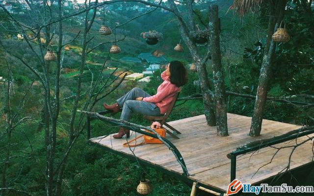 Chia sẻ kinh nghiệm du lịch Đà Lạt tự túc giá rẻ 2020 + Hình 21