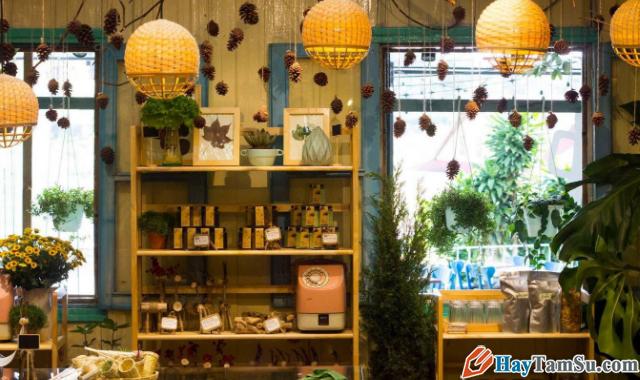 Chia sẻ kinh nghiệm du lịch Đà Lạt tự túc giá rẻ 2020 + Hình 30